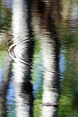 Photograph - First Drop Water Reflection by Christina Rollo
