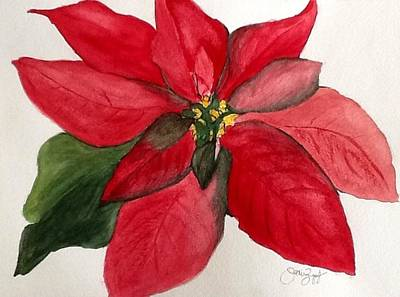 Painting - First Flower Of Christmas by Joan Zepf