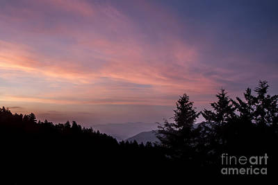 First Light At Newfound Gap Art Print by Ricky Smith