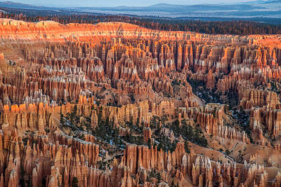 Photograph - First Light In Bryce by Pierre Leclerc Photography