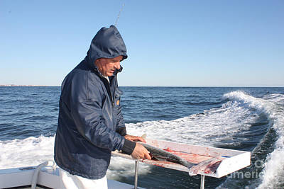 Photograph - First Mate Filleting Fish by John Telfer