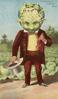 Comics Royalty-Free and Rights-Managed Images - First premium Cabbage Head by Aged Pixel