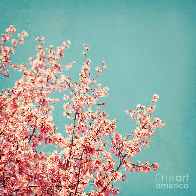 First Sign Of Spring Art Print by Kim Fearheiley