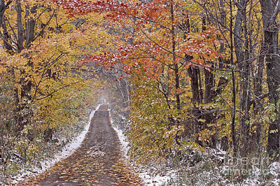 Photograph - First Snow by Alan L Graham