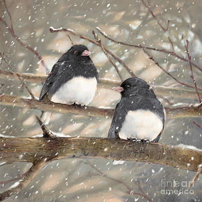 Wall Art - Drawing - First Snow Dark-eyed Juncos by Laurie Musser