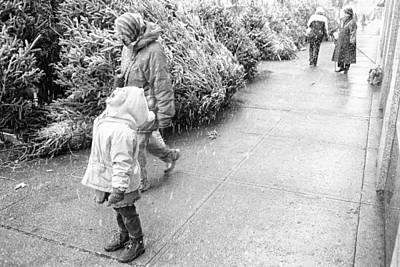 Photograph - First Snow by Dave Beckerman