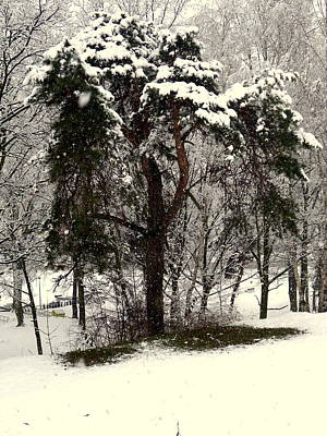 Photograph - First Snow by Henryk Gorecki
