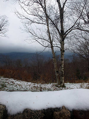 Photograph - First Snow by Mary Capriole
