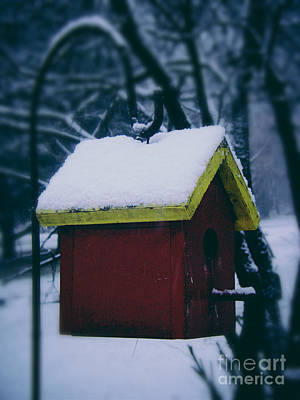 Frank J Casella Royalty-Free and Rights-Managed Images - First Snow on the Roof by Frank J Casella