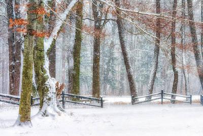Photograph - First Snow-winter Wonderland by Richard Kopchock