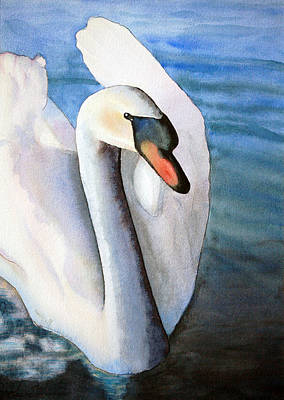 Birds Rights Managed Images - First Swan Royalty-Free Image by Flamingo Graphix John Ellis