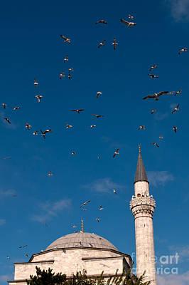 Photograph - Firuz Aga Mosque Seagulls by Rick Piper Photography