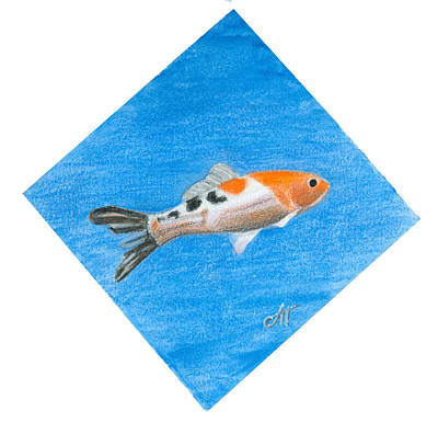 Drawing - Fish by Ana Tirolese