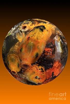 Fish Bowl Art Print