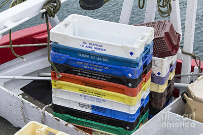 Photograph - Fish Boxes by Brian Roscorla