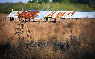 Photograph - Fish Camp Closed by Christy Usilton