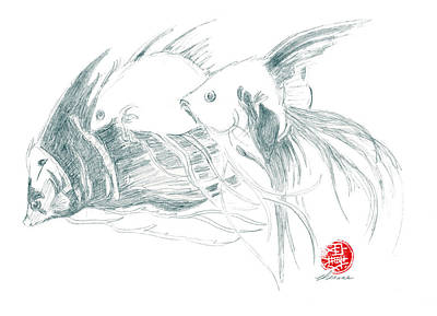 Drawing - Fish by Dianne Levy
