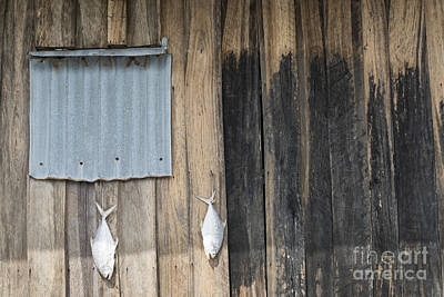 Photograph - Fish Drying Outside Rustic Fisherman House by Jacek Malipan