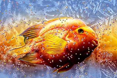 Fish Eggs Art Print by Barbara Chichester