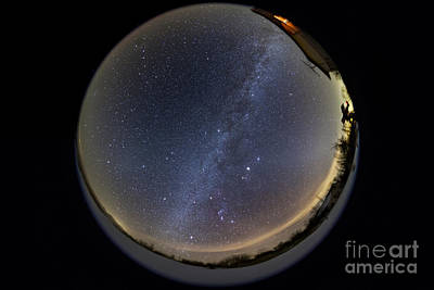 Animals Photos - Fish-eye Lens View Of The Northern by Alan Dyer