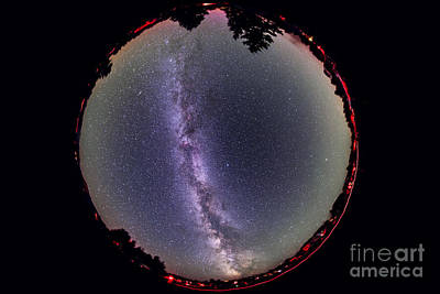 Animals Photos - Fish-eye Lens View Of The Summer Milky by Alan Dyer