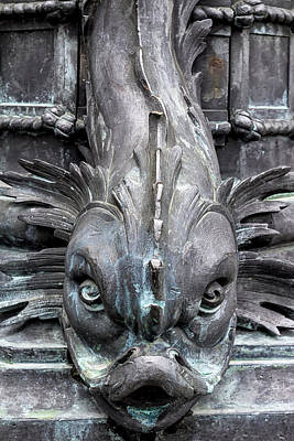 Metal Fish Art Photograph - Fish Face by Georgia Fowler