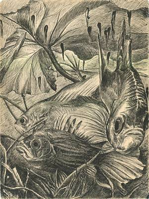 Animals Drawings - Fish Haven by Richard Jules
