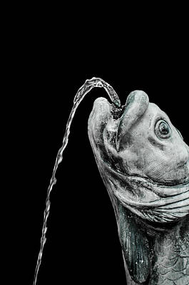 Photograph - Fish Head Fountain by Carolyn Marshall