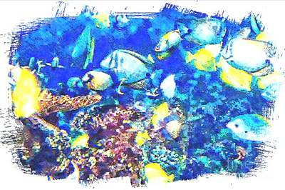Digital Art - Fish In Pastel by Steven  Pipella