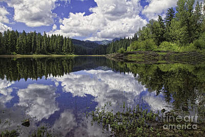 Fish Lake Art Print
