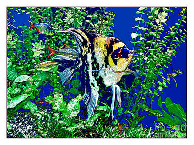 Photograph - Fish Life by Joan  Minchak