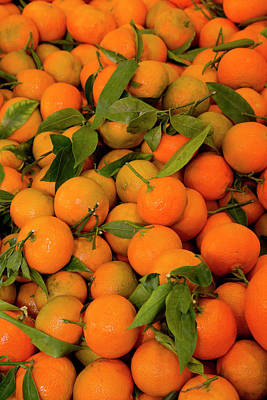 Tangerines Photograph - Fish Market Tangerines On Display by Darrell Gulin