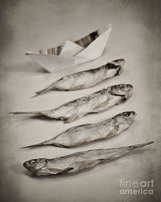 Fish Out Of Water Art Print by Diana Kraleva