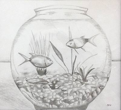 Fish Tank Drawing By Shibin Varghese