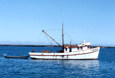 Photograph - Fishboat Vikingo In La Paz by Robert  Rodvik