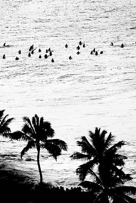 Surfing Art Photograph - Fisher Palms by Sean Davey