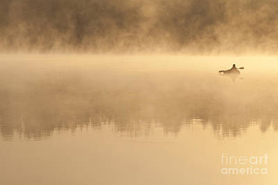 Fisherman In Kayak, Lake Cassidy Art Print by Jim Corwin
