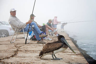 Fishing Photograph - Port Aransas Texas by Mary Lee Dereske