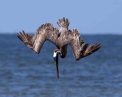 Photograph - Fishing by Alan Raasch