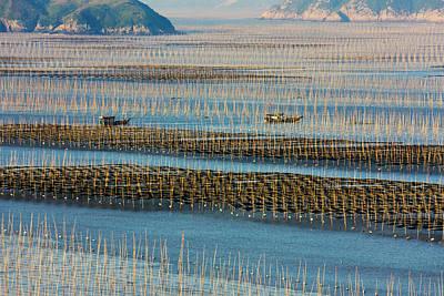 Bamboo Photograph - Fishing Boat Sailing Through Bamboo by Keren Su