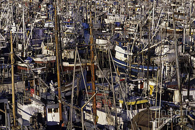 Photograph - Fishing Boats At Fishermens Terminal by Jim Corwin
