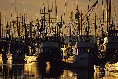 Photograph - Fishing Boats At Sunset by Jim Corwin