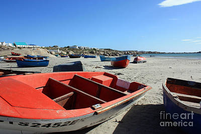 Red Roses - Fishing Boats by Marietjie Du Toit