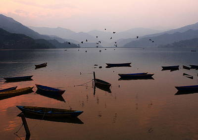 Photograph - Fishing Boats - Phewa Lake - Nepal by Aidan Moran