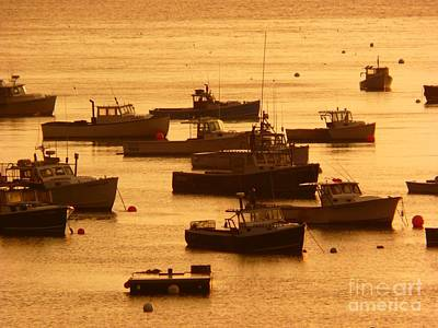 Photograph - Fishing Fleet by Christine Stack