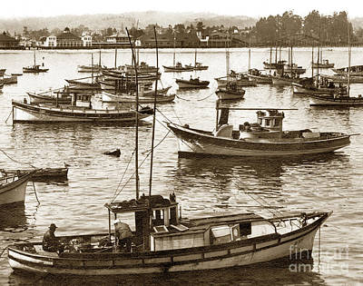 Photograph - Fishing Fleet In Santa Cruz Harbor California Circa 1920 by California Views Archives Mr Pat Hathaway Archives