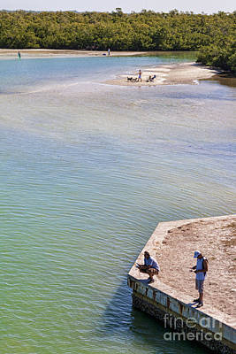 Photograph - Fishing In Estero Bay Near Fort Myers Beach Florida by William Kuta