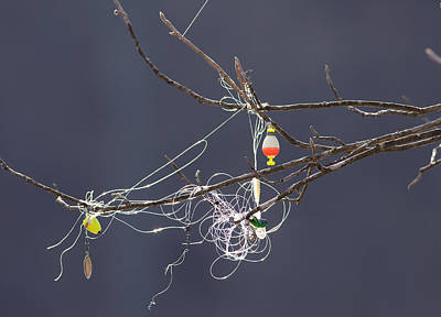 Photograph - Fishing Line Sculpture by Melinda Fawver