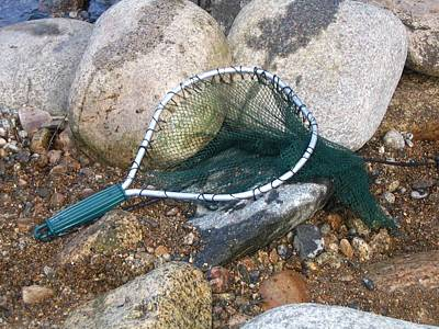 Photograph - Fishing Net by Kerri Mortenson