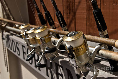 Gone Fishing Photograph - Fishing Rods For Rent by Amy Cicconi